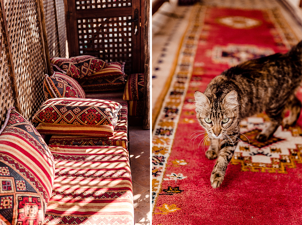 elena-engels-fotografie-marrakech-blogger-travel-reise-shooting057